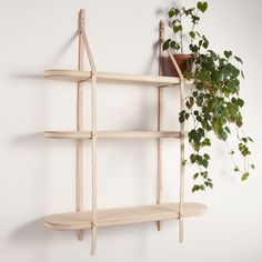 London designer Tomás Alonso presented a range of shelves and lighting that combine ash timber with leather saddlery during the London Design Festival. Each shelf is suspended on natural leather straps, of a similar tone and colour to the wood. The timber and leather are joined with little brass studs. The collection also includes a