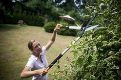 Les travaux de fond au jardin