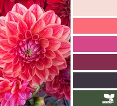Fall Color Trends for your Home - Christinas Adventures