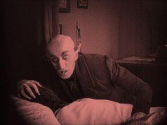 Nosferatu il vampiro - Wikipedia