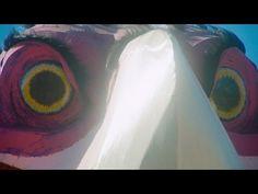 The Auteurs of Music Video: Jason Galea, Future Jodorowsky