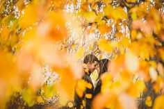 08 fall leaves engagement session