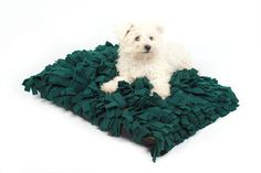 Meadow Dog Bed / Forest