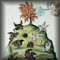 Alchemical Imagery - Emblematic - Manuscripts - Flamel