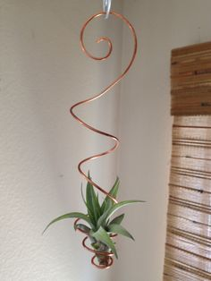 Hanging air plant holder Tillandsia display decorative air plant hanging chain by WonderfullyWiredByKH on Etsy https://www.etsy.com/listing/472023169/hanging-air-plant-holder-tillandsia