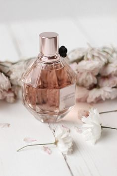 Romance fills the fresh air with this scent. Sweet, precious amber blended with … Romantik erfüllt die frische Luft mit diesem Duft. Bath Body Works, Bath And Body, Parfum Victoria's Secret, Parfum Rose, Perfume Fahrenheit, Perfume Invictus, Hermes Perfume, Best Fragrances, Flower Bomb