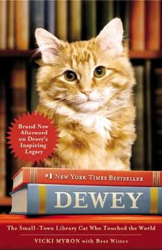 Dewey: The Small-Town Library Cat Who Touched the World by Vicki Myron http://www.amazon.ca/dp/0446407429/ref=cm_sw_r_pi_dp_WFO4tb11Z5XKR