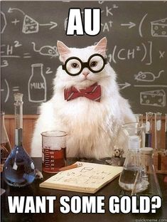 The Best Of Chemistry Cat - BuzzFeed Mobile