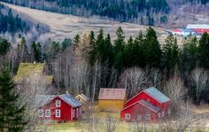 Red farmhouses by Knut Trondsen on Red Farmhouse, Norway, Cabin, Snow, Country, House Styles, Pictures, Photos, Rural Area