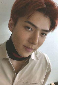 Sehun - 181104 'Don't Mess Up My Tempo' album photocard Baekhyun Chanyeol, Kpop Exo, Exo K, Exo 2014, Luhan And Kris, Ko Ko Bop, Exo Album, Kim Minseok, Kim Junmyeon