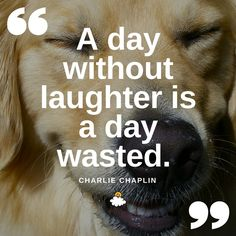 """""""A day without laughter is a day wasted."""" -Charlie Chaplin  Inspiring quotes from LittleThings"""