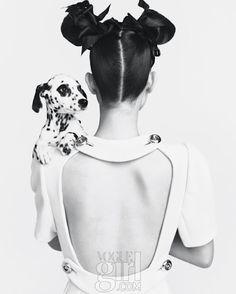 Beautiful Dalmatian in this fashion shot