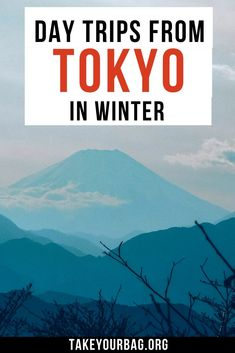 Ideas to go on day trips from Tokyo during the winter months. Exciting cities and destinations in Japan close to Tokyo and easily reachable! Asia Travel, Japan Travel, Holiday Destinations, Travel Destinations, Day Trips From Tokyo, Freedom Travel, Ultimate Travel, Travel Guides, Travel Tips