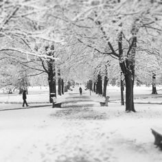 "From ""Snowvember 2014"" story by Kenyon College on Storify — https://storify.com/KenyonCollege/snowvember-2014"