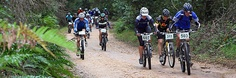 Getting outdoors on your mountain bike is easy! The Knysna Forest is waiting, the elephants hiding. On an almost weekly basis mountainbiking races and -events are being organized in the greater area. Knysna, Garden Route, Adventure Activities, Get Outdoors, Social Club, Day Tours, Elephants, Mountain Biking, South Africa