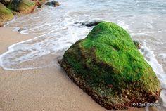 beauty in the world, thailand, koh samui, beach