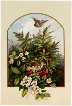 Lovely Bird's Nest with Flowers Download! - The Graphics Fairy