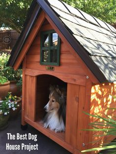 The best dog house project using high quality materials #DogHouseDIY