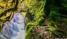 Der Eistobel im Allgäu ist eine wunderschöne Wanderung mit Wasserfällen. Lest den Bericht in unserem Wanderblog