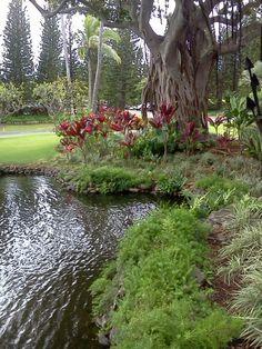 maui, hawaii...paradise