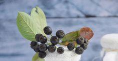 O tym, że aronia to jeden ze zdrowszych owoców nie muszę chyba nikomu mówić.Pozytywnie wpływa na kondycję naszych naczyń krwionośnych, za...