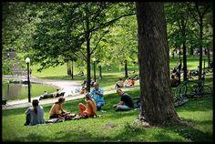 Parc Lafontaine, Montréal, Canada Romantic Proposal, O Canada, Montreal Quebec, Parcs, Ottawa, Dolores Park, Journey, Landscape, City