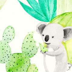 CACTUS KOALAS - Amy Borrell | Illustration  Design