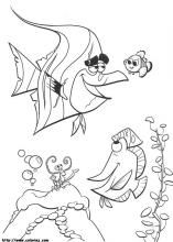 finding nemo coloring pages on coloring bookinfo - Coloring Pages Coloring Book Info