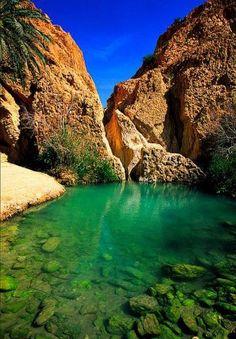 Oasi, Deserto Roccioso, Tunisia