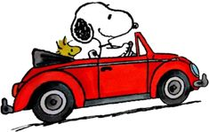 Snoopy and Woodstock Snoopy Tattoo, Peanuts Cartoon, Peanuts Snoopy, Snoopy Coloring Pages, Snoopy Merchandise, Charlie Brown Y Snoopy, Snoopy Und Woodstock, My Dad My Hero, Snoopy Pictures