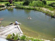 Bild Schwimmteich Spaß1