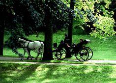 Kutschfahrt durch die Lichtentaler Allee in Baden-Baden