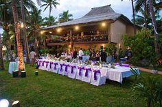 Reception - Purple