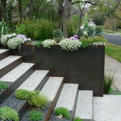 Modern Home Planter Boxes Design, Pictures, Remodel, Decor and Ideas - page 11