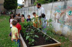emilio bertoncini: orti scolastici
