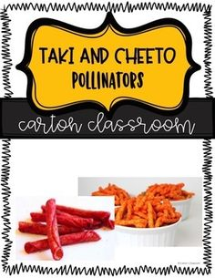 This lesson allows for students to investigate how bees pollinate flowers. This is a very engaging lesson incorporating english standards in the reading and question prompts. **Kool-Aid powder used as an alternative to Takis or Cheetos. Use qtips in order
