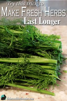 Try this great trick that will keep fresh herbs lasting weeks longer - and it costs next to nothing From: Dishes And Dust Bunnies, please visit Spices And Herbs, Fresh Herbs, Cooking Recipes, Healthy Recipes, Herb Recipes, Growing Herbs, Baking Tips, Kraut, Fruits And Veggies