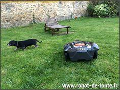 Plus de 1000 id es propos de robots de tonte sur for Forfait tonte pelouse