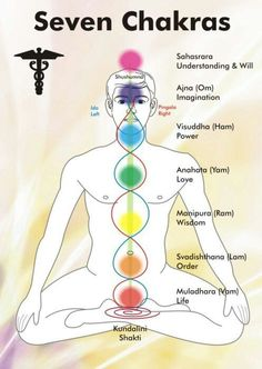 "Nāḍi (Sanskrit नाडि, nāḍi = tube, pipe) are the channels through which, in traditional Indian medicine and spiritual science, the energies of the subtle body are said to flow. They connect at special points of intensity called chakras. The word ""nadi"" is pronounced as ""naRdi"", with R+d loosely pronounced together (the effort is made by the tip of the tongue; it curls up, pointing backwards, then springs forward to lie flat). In normal biological reference, a nadi can be translated into…"