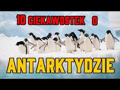 10 Ciekawostek o ANTARKTYDZIE | Antarktyda - Niezwykłe Fakty - YouTube Multimedia, Youtube, Winter, Movies, Movie Posters, Geography, Poster, Winter Time, Films