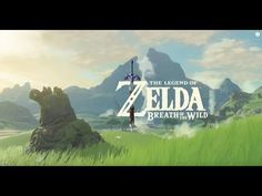 Legend Of Zelda (BOTW) Switch 1 Month Anniversary!
