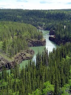 Here are 26 fun, interesting and useful facts about the city of Whitehorse in the Yukon Territory. It's the largest northern city in Canada with over people Yukon Territory, Visit Canada, Canada Travel, Camping Hacks, Trip Planning, Fun Facts, Scenery, Beautiful Pictures, Places To Visit