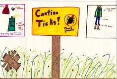 Two local students among Lyme disease poster winners - Knox VillageSoup