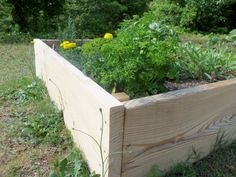 Benefits Of Raised Beds For Gardens - The first good solution to gardening where the soil is rocky or of poor quality is a raised bed garden plot. A raised bed is a sort of bottomless box making it different from a container garden. The most common materials used are plywood boards that are hinged together. However there are other options. Avoid the cost of lumber and hardware with whatever you have on hand. Bricks, concrete blocks, old logs, large rocks or boulders.