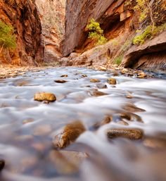 10 Trails Everyone Must Hike - Zion Narrows - Zion National Park, Utah Zion Narrows Hike, Narrows Zion National Park, National Parks, Oh The Places You'll Go, Places To Visit, Zion Utah, Walk The Earth, Hiking Trails, Vacation Spots