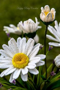 Crochet Daisy Flower Pattern Shasta Daisy by HappyPattyCrochet                                                                                                                                                                                 More