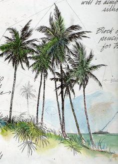 Palm trees -sketch by Frederick J. Garner
