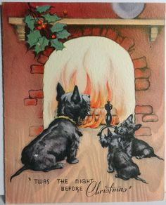 'Twas the night before Christmas and the only creatures stirring are Scotties...
