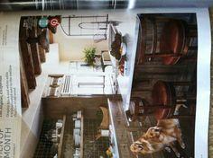 Cool kitchen. Love the backsplash and lights.