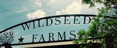 wild seed farm texas